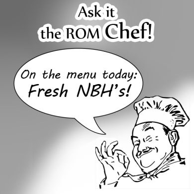 XDA Interview with Chef NRGZ28