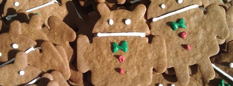 Gingerbread SDK Released Earlier Today