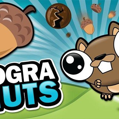 Get Your Nut On with Noogra Nuts