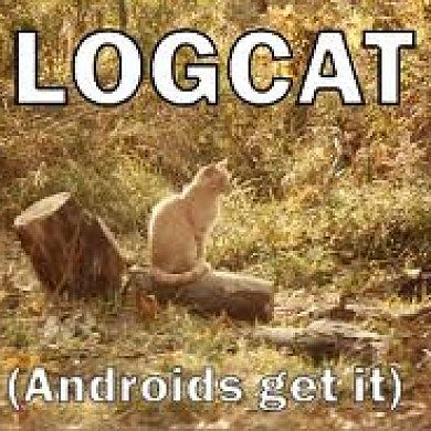 Help Your Developers; Pull a Logcat when Issues Arise