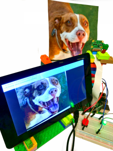 Android Things Developer Preview 2 Released – Tensorflow, Peripheral
