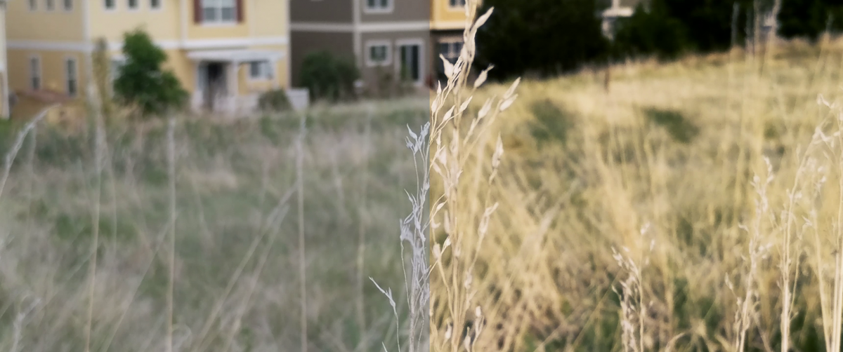 How to get Cinematic Footage with your Android Phone