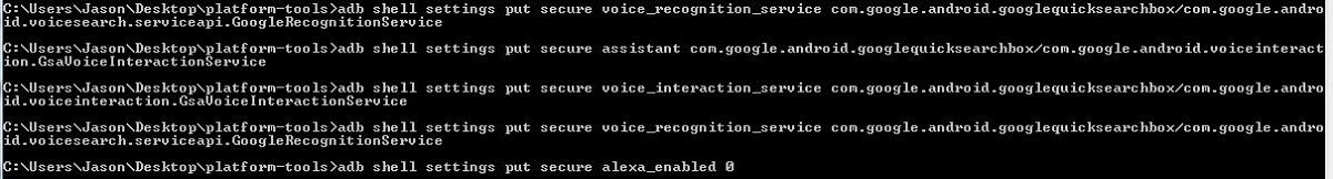 How to Disable Alexa and get