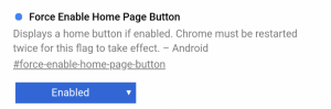 Google Chrome Home Button