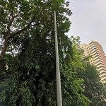 Huawei P20 Pro Daylight Camera Sample