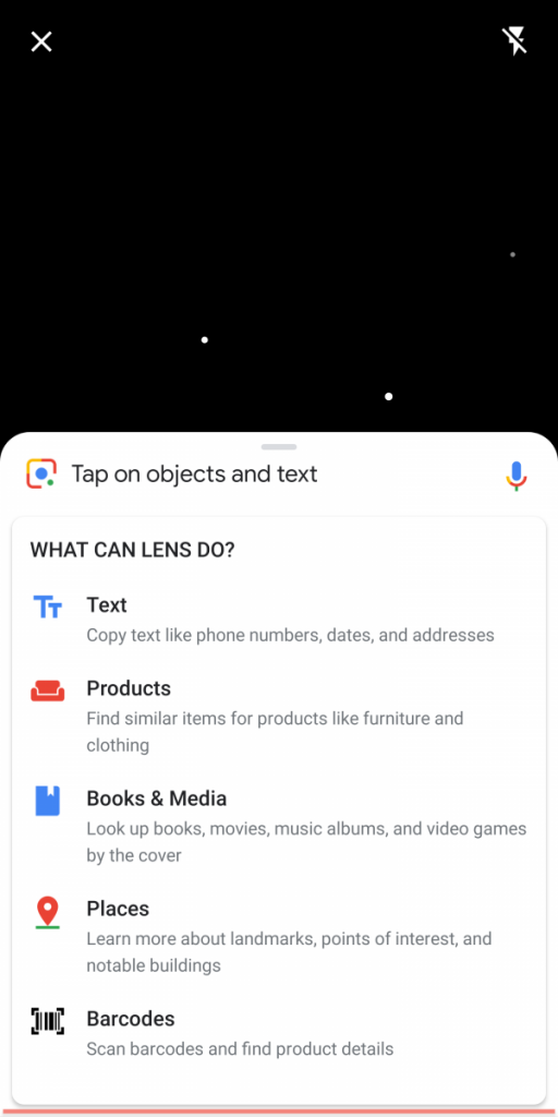 Google Lens within Google Camera