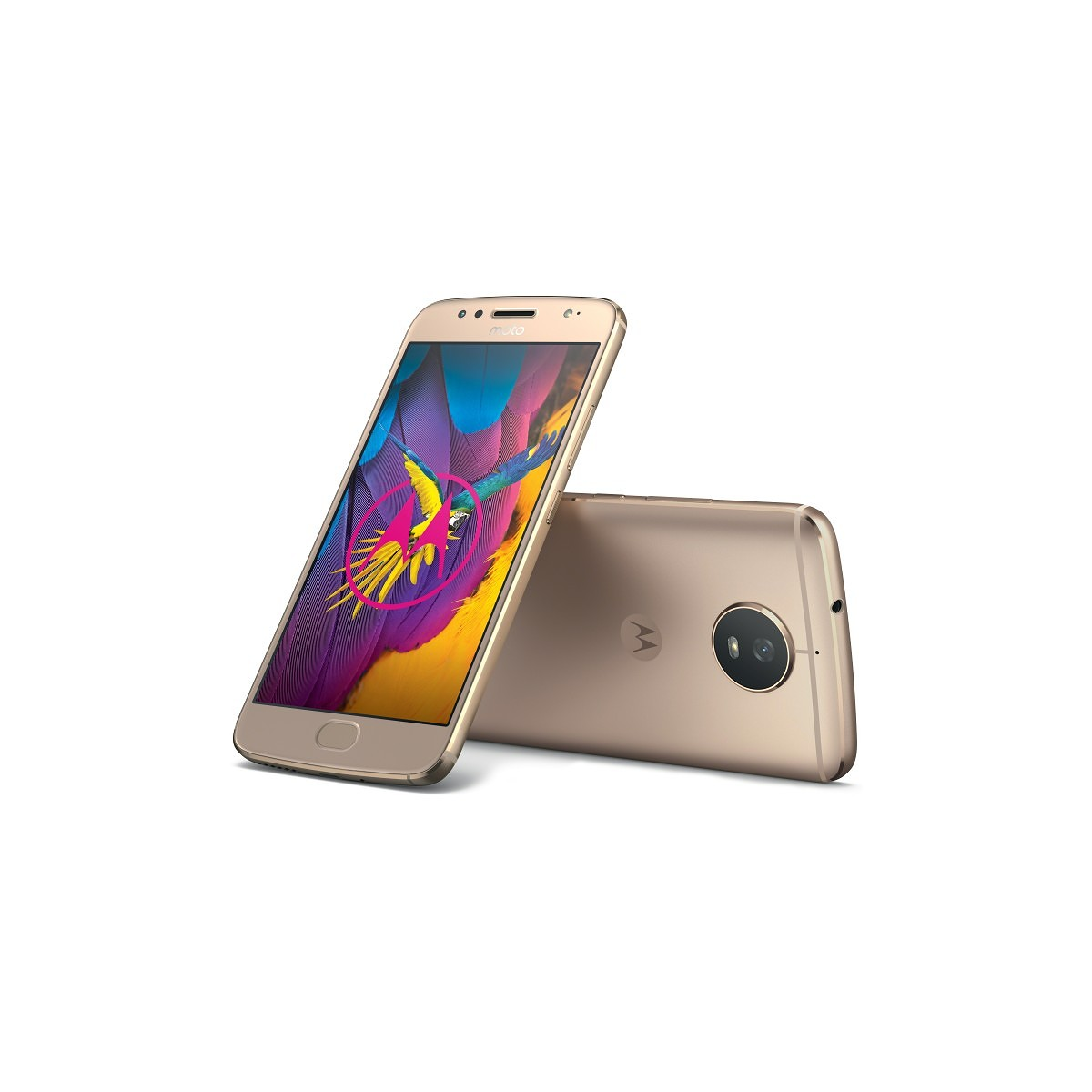 Moto G5S Android Oreo flashable images now available for all