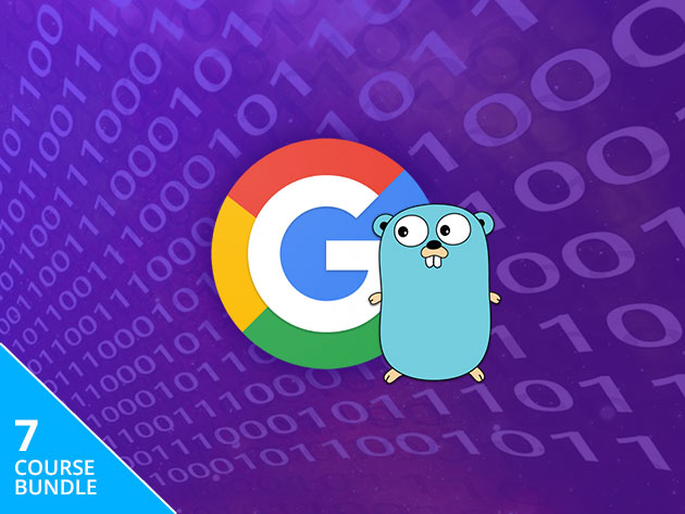 Catalyze an In-Demand Coding Career with this $29 Google Go Training