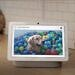 Grab a Google Nest Hub for only $80 right now ($20 off)