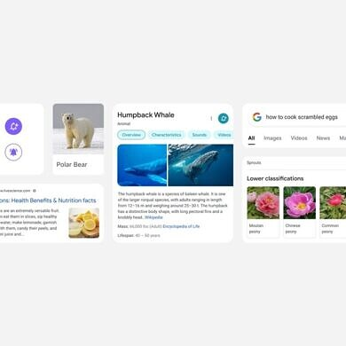 Google Search gets a big redesign on mobile that focuses on simplicity