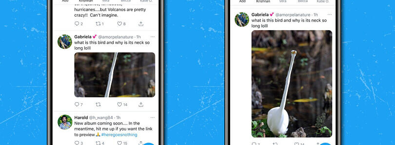 Twitter rolls out improved image cropping on iOS and Android