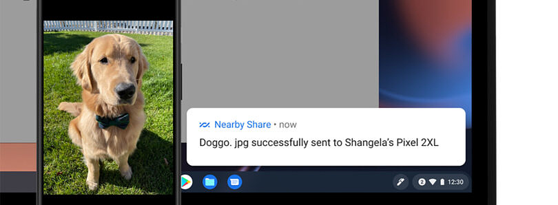 Chrome OS 91 adds Nearby Share for file transfer between Chromebooks and Android
