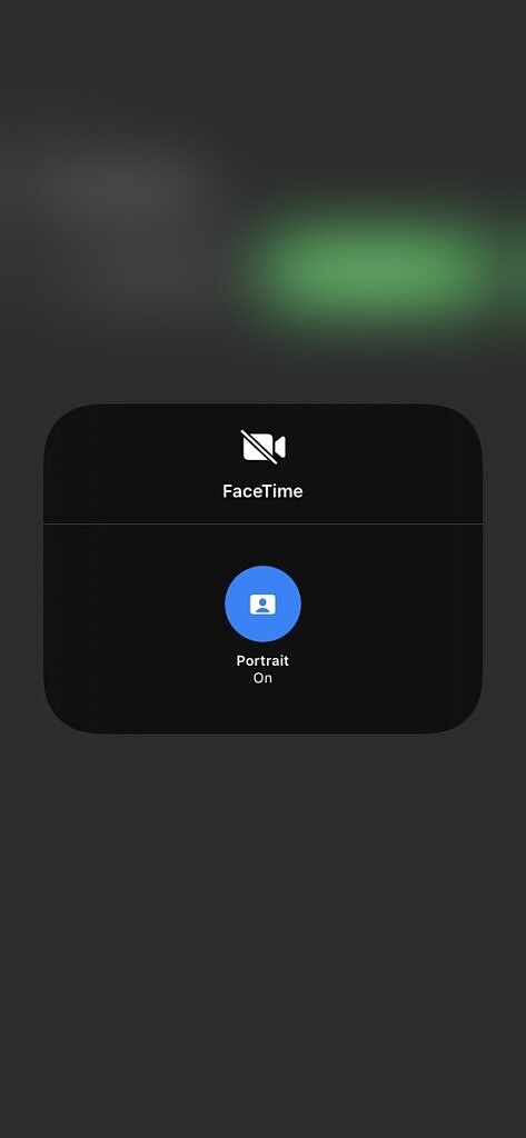 Screenshot showing Portrait Mode in Facetime on iOS 15