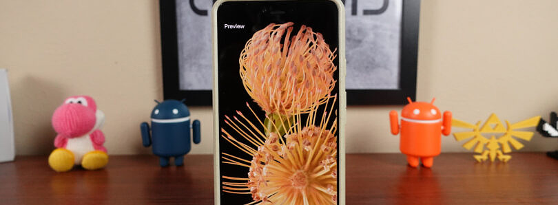 The Pixel 6 Pro comes with these beautiful wallpapers of flowers