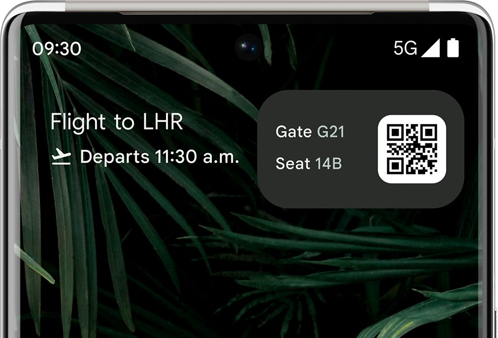 Live Space widget with Flight Card